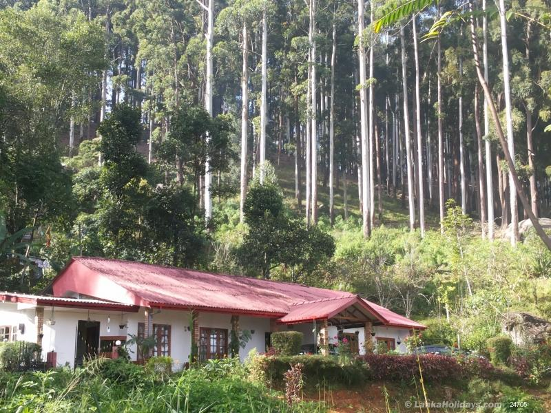 Nuwara Eliya holiday Bungalow